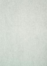 Bright White #1